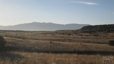 Pueblo Residential Lots & Land For Sale: Par 76 Railroad Spring Dr