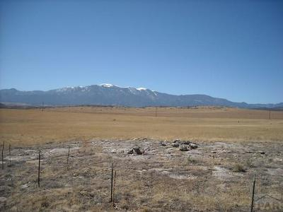 Colorado City Residential Lots & Land For Sale: Tbd Little Floyd Rd