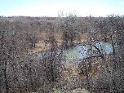 Pueblo Residential Lots & Land For Sale: Tbd Ford Rd