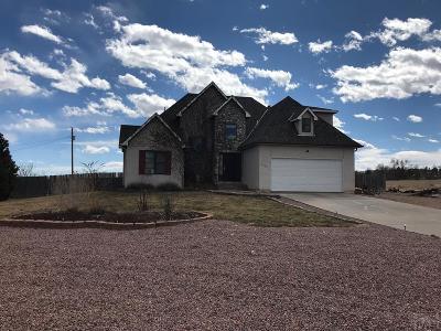 Colorado City Single Family Home For Sale: 4920 Cuerno Verde Blvd