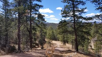 Canon City Residential Lots & Land For Sale: 1025 S Pine Ave