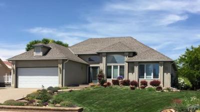 Pueblo Single Family Home For Sale: 13 Altadena Dr