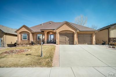 Pueblo Single Family Home For Sale: 1510 Lynn Meadows Dr