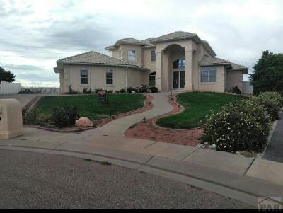 Pueblo Single Family Home For Sale: 4812 Polo Court