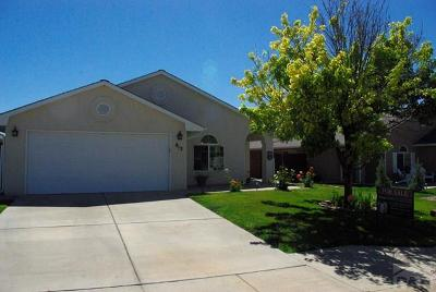 Pueblo Single Family Home For Sale: 813 Ardath Lane