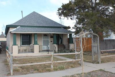 Pueblo Single Family Home For Sale: 1234 Palmer Ave