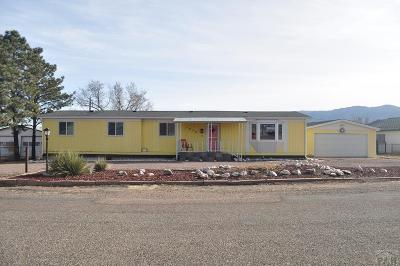 Canon City Single Family Home For Sale: 1030 Josie Belle