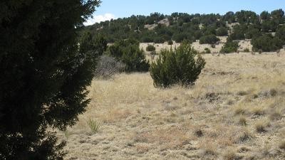 Pueblo Residential Lots & Land For Sale: Par 27 Mallory Dr