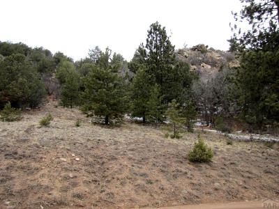Canon City Residential Lots & Land For Sale: Tbd Taylor Trail
