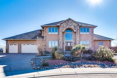 Pueblo Single Family Home For Sale: 3534 Delano