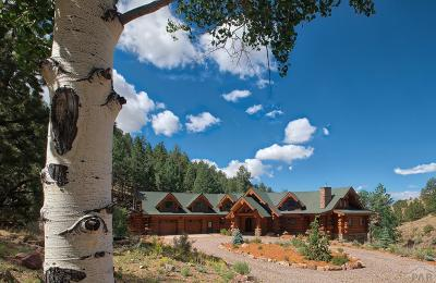 Westcliffe Single Family Home For Sale: 995 Schulze Ranch Rd