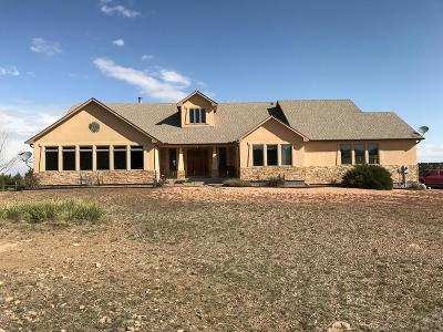 Pueblo Single Family Home For Sale: 3071 Vaughn View