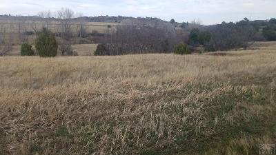 Colorado City Residential Lots & Land For Sale: Tbd Showalter Dr.