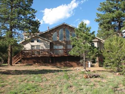 Westcliffe Single Family Home For Sale: 133 Pawnee