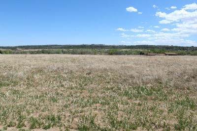 Colorado City Residential Lots & Land For Sale: Tbd Bent Brothers Blvd