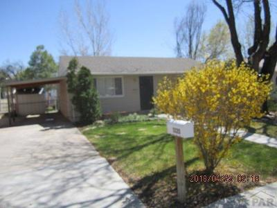 Canon City Single Family Home For Sale: 1320 Rudd Ave
