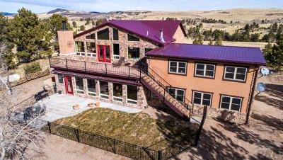 Canon City Single Family Home For Sale: 651 Alpine Ranch Cir