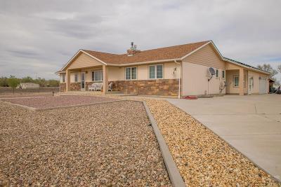 Pueblo Single Family Home For Sale: 640 Avondale Blvd