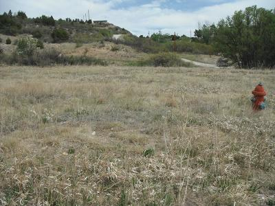 Colorado City Residential Lots & Land For Sale: Tbd Beverly Dr