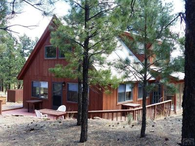 Westcliffe Single Family Home For Sale: 111 Sioux Trail