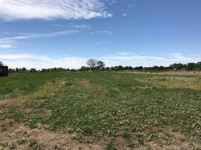 Pueblo Residential Lots & Land For Sale: Tbd Iris Rd