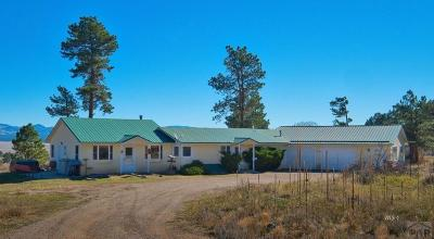 Westcliffe Single Family Home For Sale: 4964 County Rd 125