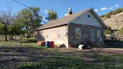 Canon City Single Family Home For Sale: 1551 Fourmile Lane
