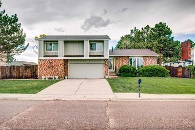 Pueblo Single Family Home For Sale: 49 Sepulveda Dr.