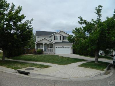 Pueblo Single Family Home For Sale: 3813 Bison Lane