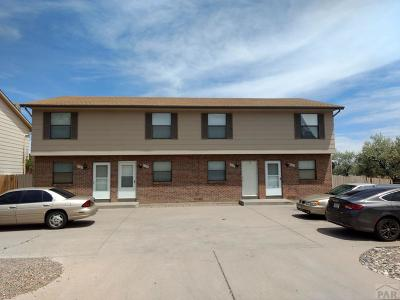Pueblo Multi Family Home For Sale: 1900 S Salem Ave #4