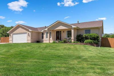 Colorado City Single Family Home For Sale: 3871 Carnero Way