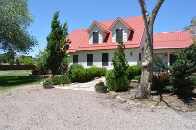 Canon City Single Family Home For Sale: 1345 Sherman Ave