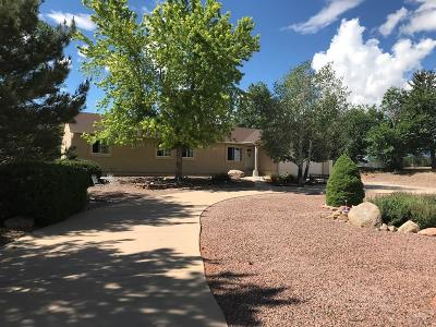 Colorado City Single Family Home For Sale: 4954 Cuerno Verde Blvd