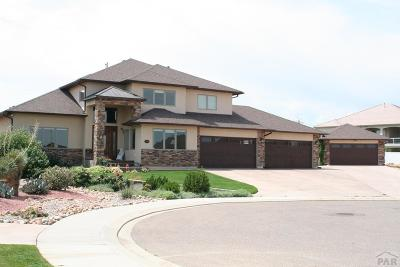 Pueblo Single Family Home For Sale: 3535 Delano