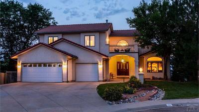 Pueblo Single Family Home For Sale: 34 Heather Ct.