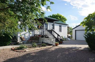 Avondale Single Family Home For Sale: 706 Avondale Blvd