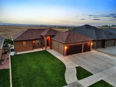 Pueblo Single Family Home For Sale: 1601 Savannah Dr