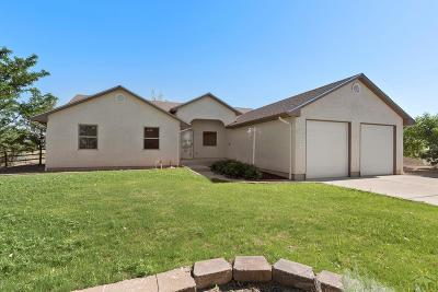 Pueblo Single Family Home For Sale: 41305 Olson Rd