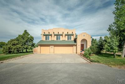 Pueblo Single Family Home For Sale: 27401 Manning Rd