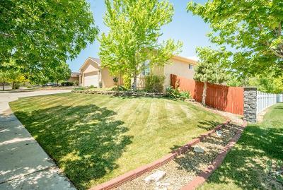 Pueblo Single Family Home For Sale: 5305 Costa Mesa