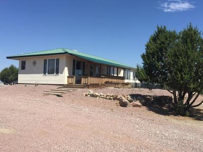 Pueblo Single Family Home For Sale: 1655 Newton Rd