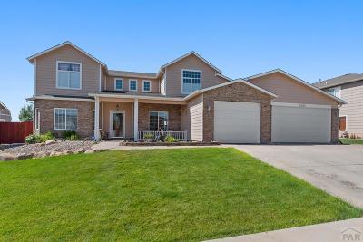 Pueblo Single Family Home For Sale: 5204 Pascadero Dr