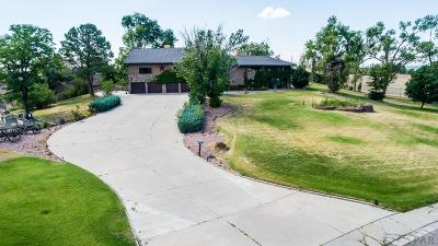 Pueblo Single Family Home For Sale: 3404 Northridge Dr