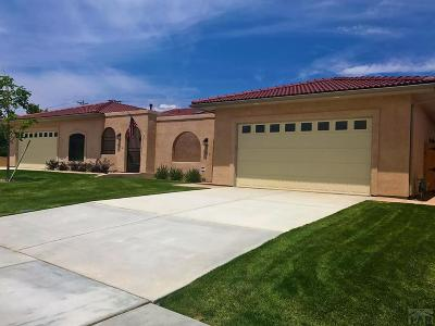 Pueblo Single Family Home For Sale: 1417 Aquila Dr