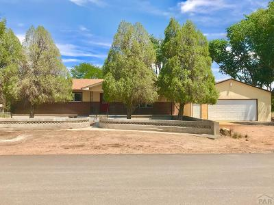 Pueblo Single Family Home For Sale: 1196 29 1/4 Ln