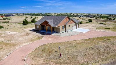 Colorado City Single Family Home For Sale: 7375 Stirrup Ln