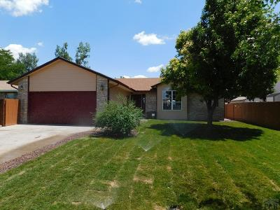 Pueblo Single Family Home For Sale: 1518 Kingsroyal Blvd