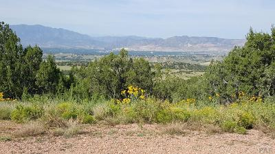 Canon City Residential Lots & Land For Sale: Tbd Dakota Dr