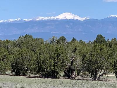 Pueblo Residential Lots & Land For Sale: Newton Rd