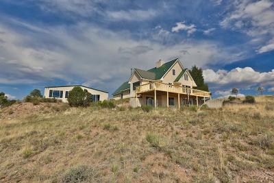 Westcliffe Single Family Home For Sale: 287 Choctaw Trail